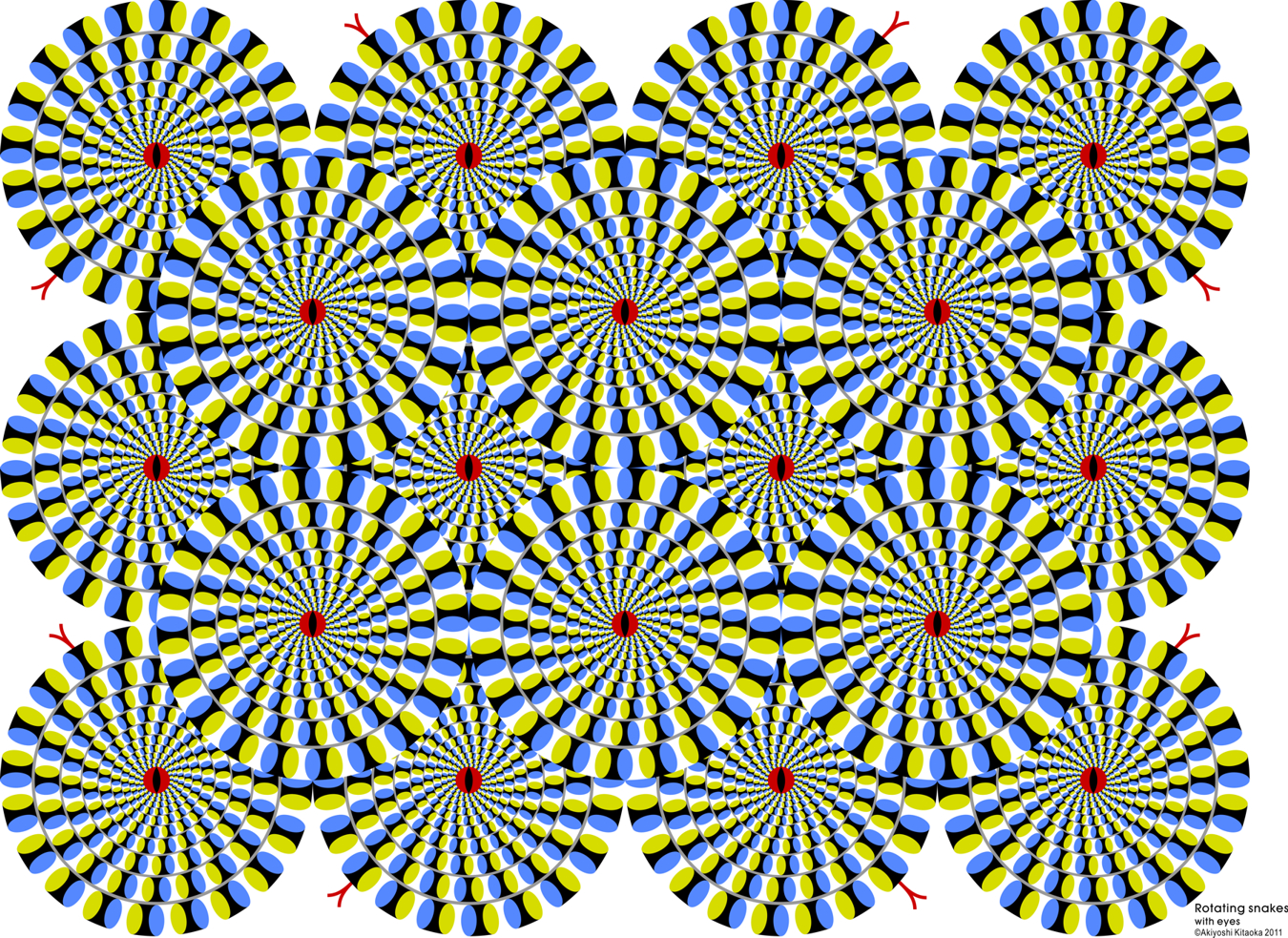 rotating snakes 13